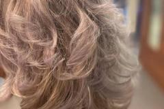 highlights met Alter ego silver maintain conditioner